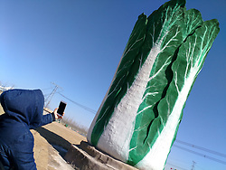 March 23, 2019 - Dongyin, China - An 18-meter-tall jade cabbage sculpture can be seen in Dongying, east China's Shandong Province. (Credit Image: © SIPA Asia via ZUMA Wire)