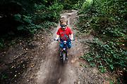 Netherlands, Woudenberg, 27-08-2017<br /> In Woudenberg rijdt een driejarige peuter met zijn loopfiets over het speciaal aangelegde mountainbike parcours. Op de Utrechtse Heuvelrug mag alleen op de speciale routes gemountainbiket worden.<br /> <br /> In Woudenberg a three year old child ride at the single tracks in the woods.<br /> Foto: Bas de Meijer / Hollandse Hoogte