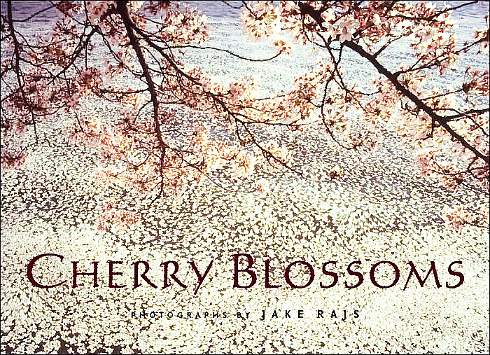 Cherry blossom season is perhaps the most anticipated flowering every spring; the countless festivals are a testament to its perennial popularity. With Cherry Blossoms, award-winning photographer Jake Rajs captures the flower in its natural habitats the world over: from the delicacy of the single bloom to the lush beauty of an entire tree, to the effect of sunlight and water on the blossoms' petals. Supplemented with historical Japanese woodblock prints of the flower and quotes from such writers as Percy Shelley, Mark Twain, and haiku poet Basho, this keepsake volume will delight flower lovers everywhere.