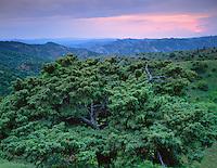 Georgia, Vashlovani National Park, Georgia, sunset view