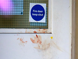 © Licensed to London News Pictures. 27/07/2015. London, UK. Blood marks on an interior door at the property. Police and scene of crime officers at Collette House in Acton, West London, where the body of a woman in her 30s was found this morning (Mon). Police are currently searching for Michael Meanza  aged 47 in connection with the death.  Photo credit: Ben Cawthra/LNP