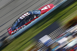 November 19, 2017 - Homestead, Florida, United States of America - November 19, 2017 - Homestead, Florida, USA: Dale Earnhardt Jr. (88) battles for position during the Ford EcoBoost 400 at Homestead-Miami Speedway in Homestead, Florida. (Credit Image: © Justin R. Noe Asp Inc/ASP via ZUMA Wire)