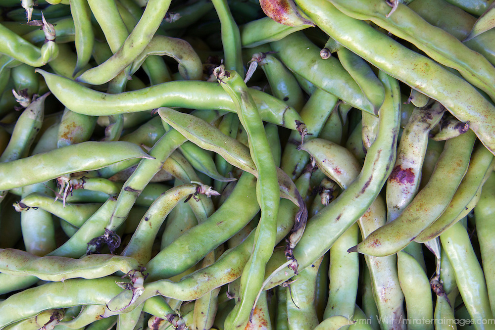 North Africa, Morocco, Fes. Fava Beans in Fes Souk.