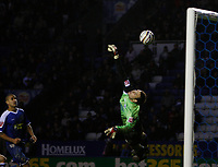 Photo: Steve Bond/Sportsbeat Images.<br /> Leicester City v West Bromwich Albion. Coca Cola Championship. 08/12/2007. Keeper Marton Fulop dives but cannot keep out the late strike by Craig Beattie. Patrick Kisnorbo (L) looks on.