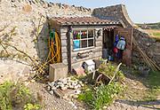 Potting shed Gertrude Jekyll garden on Holy Island, Lindisfarne, Northumberland, England, UK