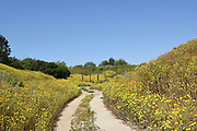 Santa Ana Nature Trail at the Santa Ana Heritage Museum