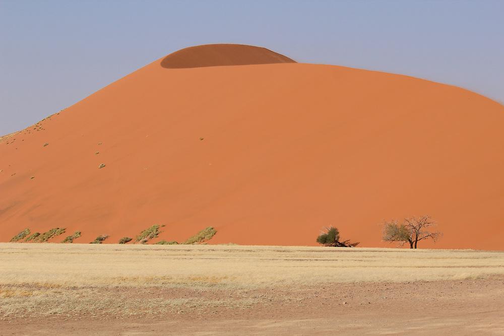 Sossusvlei sand dunes landscape in the Nanib desert near Sesriem (Dune 45), Namibia