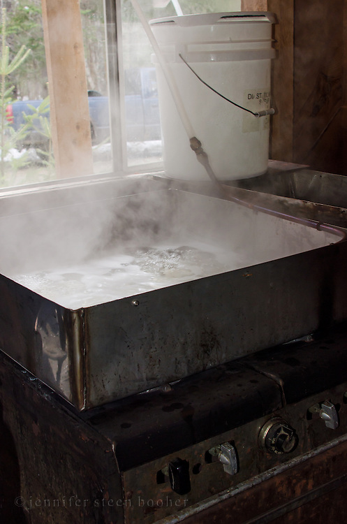 An organic farmer's equipment for boiling maple syrup, Bar Harbor, Maine.