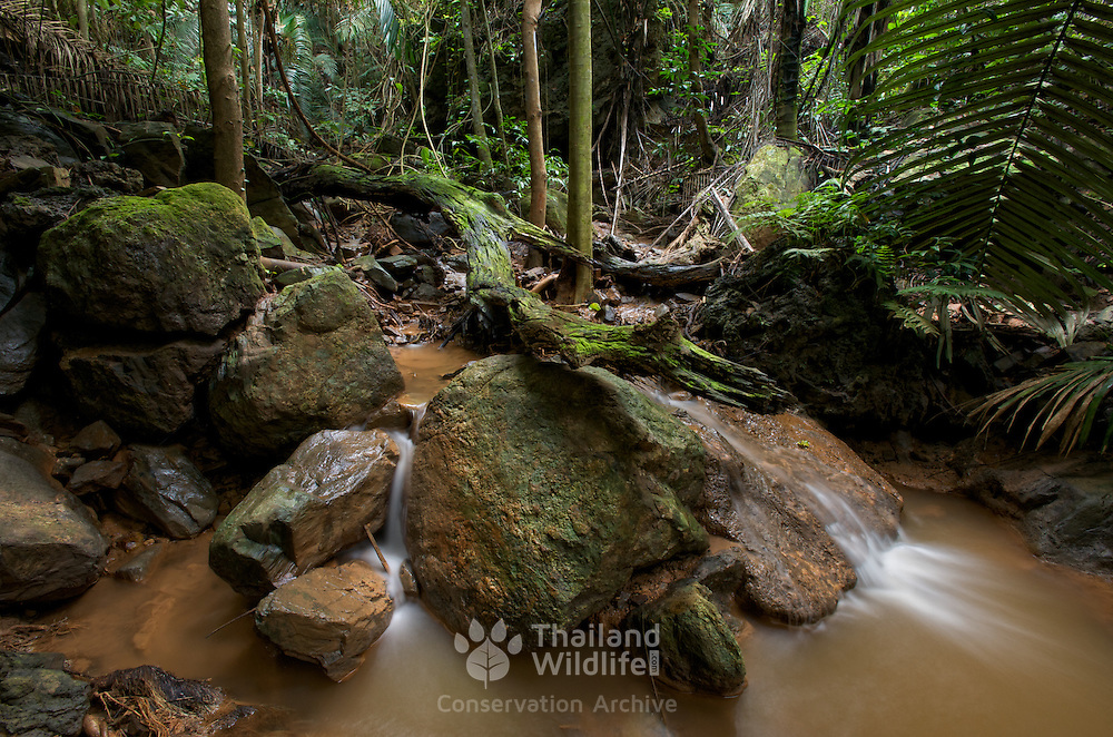 Jungle streams and tributaries of the Sai Boe Waterfall (also known as Cyber Waterfalll)  in the Huai Kha Khaeng Wildelife Sanctury in Thailand.