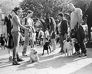 My Dog Loves Central Park 2013