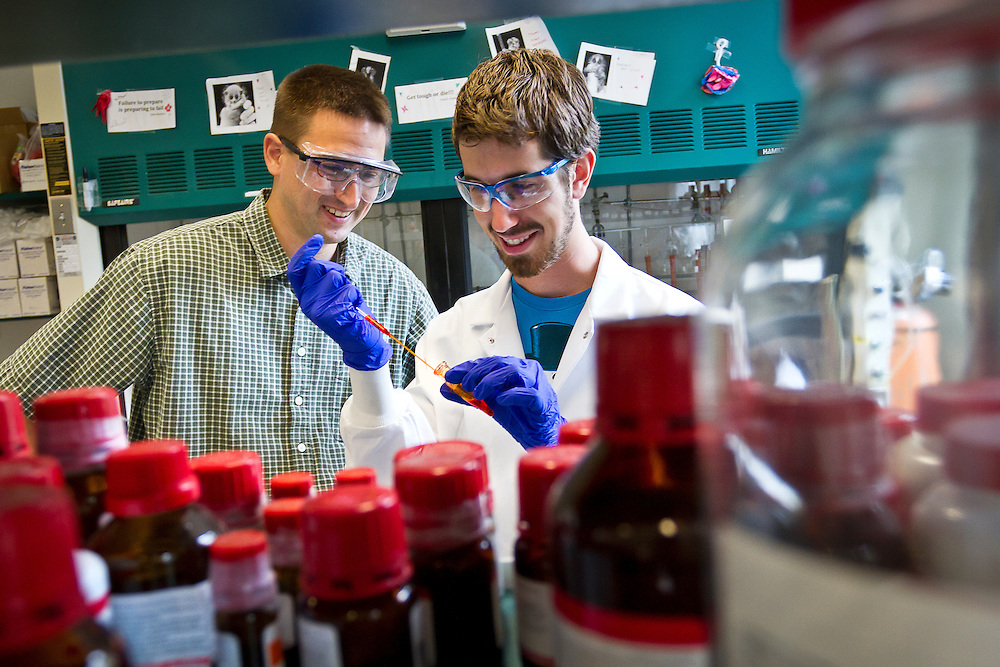 Assistant Professor of Chemistry Stephen Sieck and Paul Leger '12 work in their research lab for a portrait on Friday morning. Leger and Sieck worked closely over the summer doing a MAP project in synthetic chemistry.