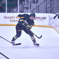 2nd year forward, Emma Coulter (13) of the Regina Cougars during the Women's Hockey Away Game on Fri Jan 11 at University of Saskatoon. Credit: Arthur Ward/Arthur Images