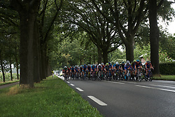 The peloton along a tree lined street at Boels Ladies Tour 2019 - Stage 2, a 113.7 km road race starting and finishing in Gennep, Netherlands on September 5, 2019. Photo by Sean Robinson/velofocus.com