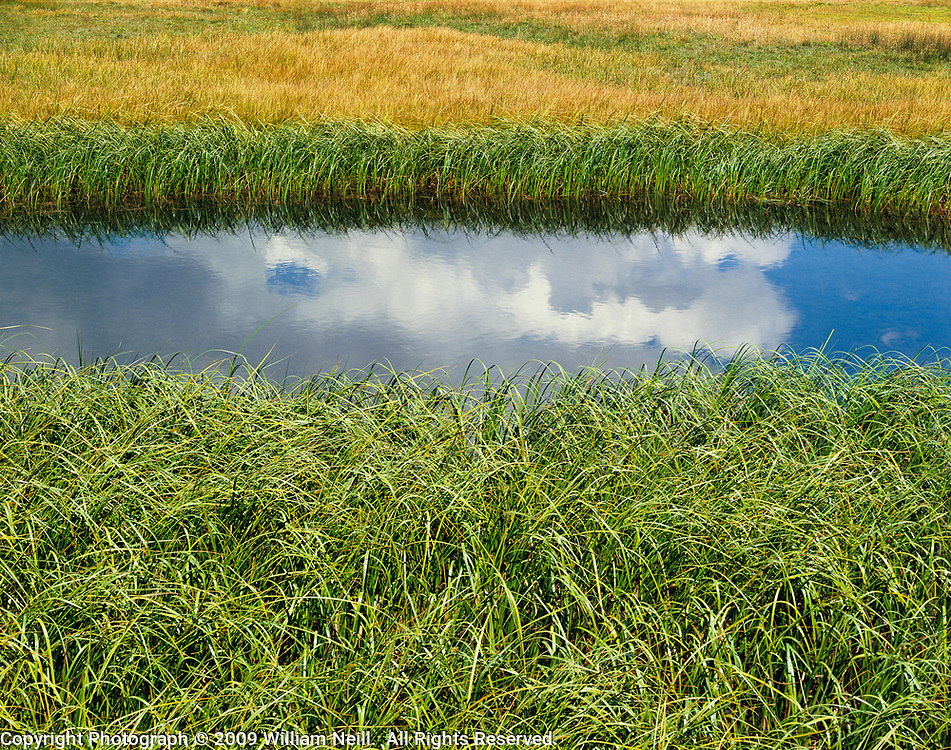 Cloud reflections and grasses, Tuolumne Meadows, Yosemite National Park,  California  1983