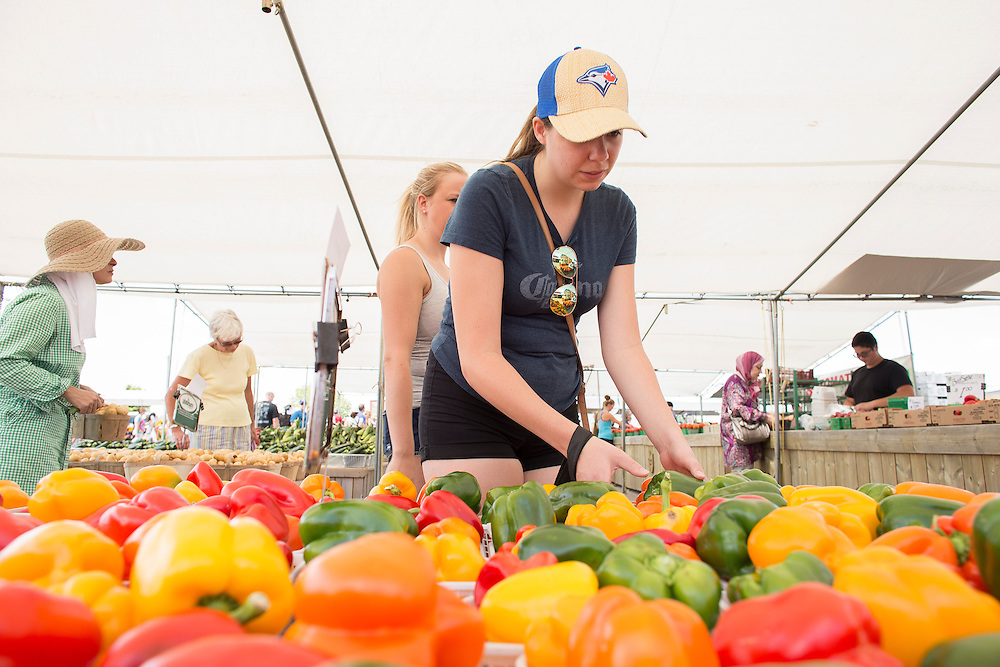 Sarah Geissinger picks some peppers at the Nemeth Farms stand at the St. Jacob's market in Kitchener Ontario, Saturday,  July 23, 2016.<br /> Farmers Forum/ Geoff Robins