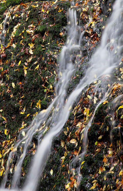Waterfall detail with leafs in autumn colors. Besse, Auvergne, France