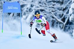 Women's Giant Slalom, KRATTER Elena, LW2, SUI at the WPAS_2019 Alpine Skiing World Championships, Kranjska Gora, Slovenia
