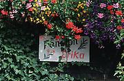 """Deutschland, Germany,Baden-Wuerttemberg.Schwarzwald.Menzenschwand, Schild """"Pension Erika"""" mit Blumen.Menzenschwand, sign of guest house..."""