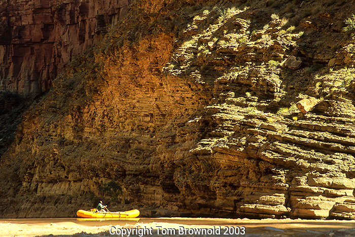 Floating on the Colorado River going past Metkat Amiba canyon.