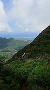 Wa'ahila Ridge at the top of Koolau Mts, Honolulu, Oahu, Hawaii