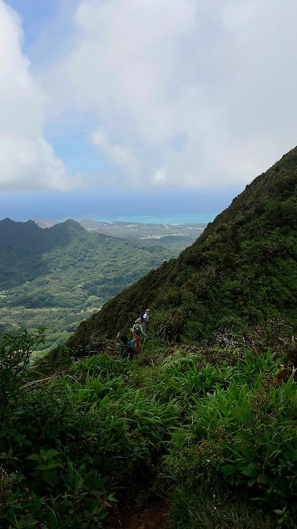 Wa'ahila Ridge at the top of Koolau Mts, Honolulu, Oahu, Hawaii