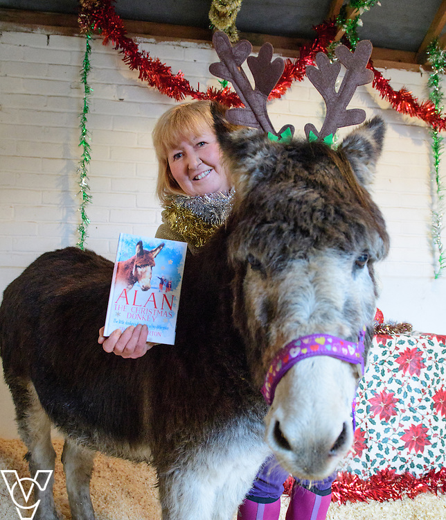 Tracy Garton who runs Radcliffe Donkey Sanctuary, in Huttoft in Lincolnshire, has written a book about Alan, one of her rescue donkeys.  The book is called Alan the Christmas Donkey.  Pictured is Tracy Garton with Alan the Donkey.<br /> <br /> Picture: Chris Vaughan Photography<br /> Date: December 12, 2016