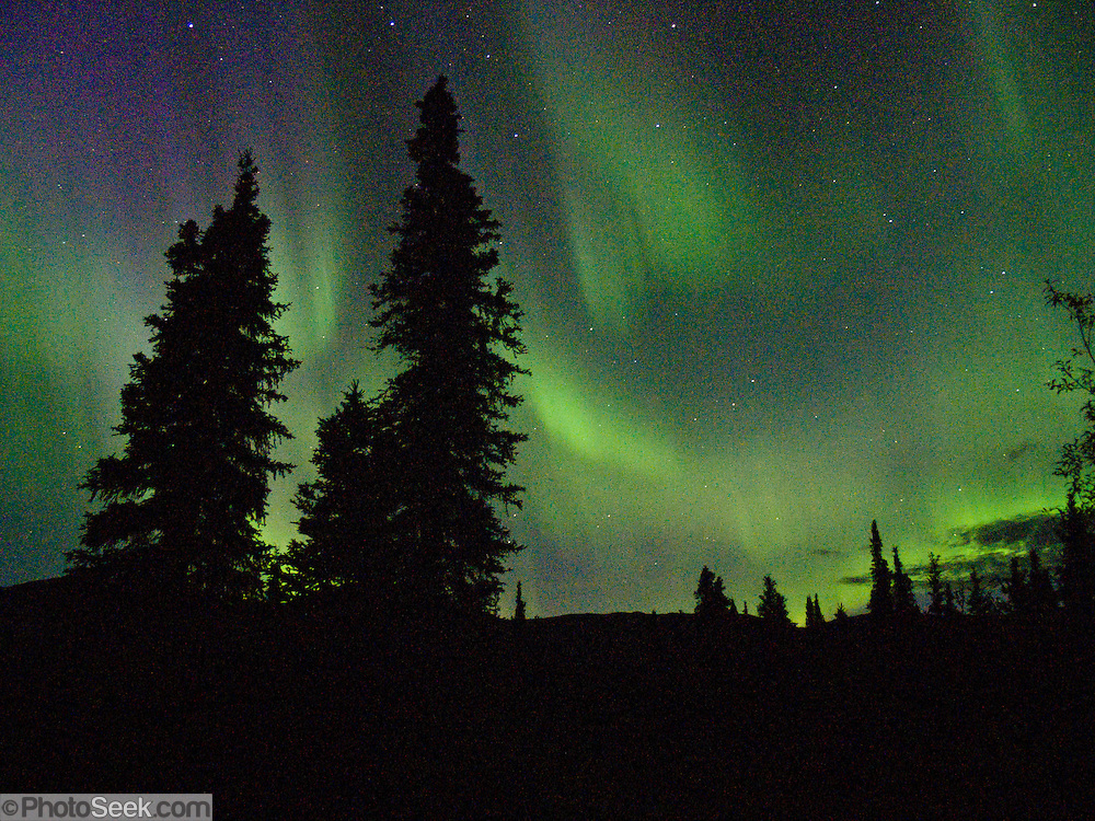 The northern lights glow after midnight in late August at Teklanika Campground, Denali National Park and Preserve, Alaska. In 1621, Pierre Gassendi named the aurora borealis after the Roman goddess of dawn, Aurora, and the Greek name for north wind, Boreas.