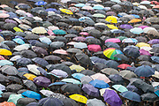 CHINA, Hong Kong: 17 August 2019 <br /> Hundreds of umbrellas go up as it starts to rain as thousands of teachers and other protesters descend on to Chater Park this morning forming part of The Teacher's March which follows weeks of demonstrations which has brought the city to a standstill. Demonstrators have taken to the streets of Hong Kong in protest of a controversial extradition bill since 9th of June which has resulted in several violent clashes.<br /> Rick Findler / Story Picture Agency