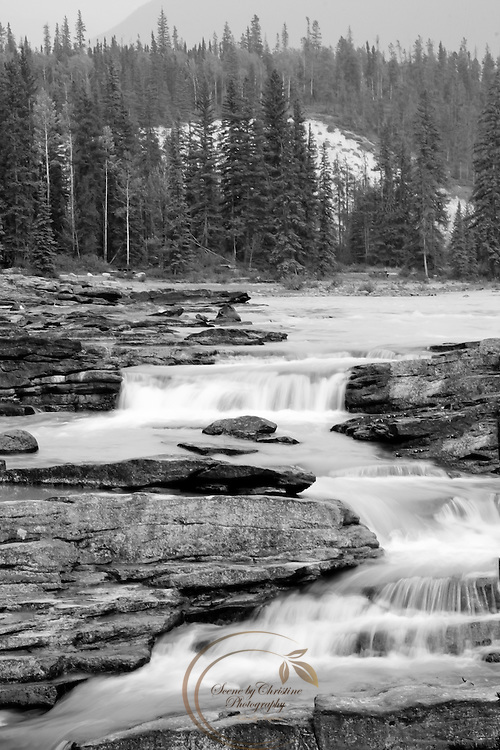 A section of Athabasca Falls in Black and White