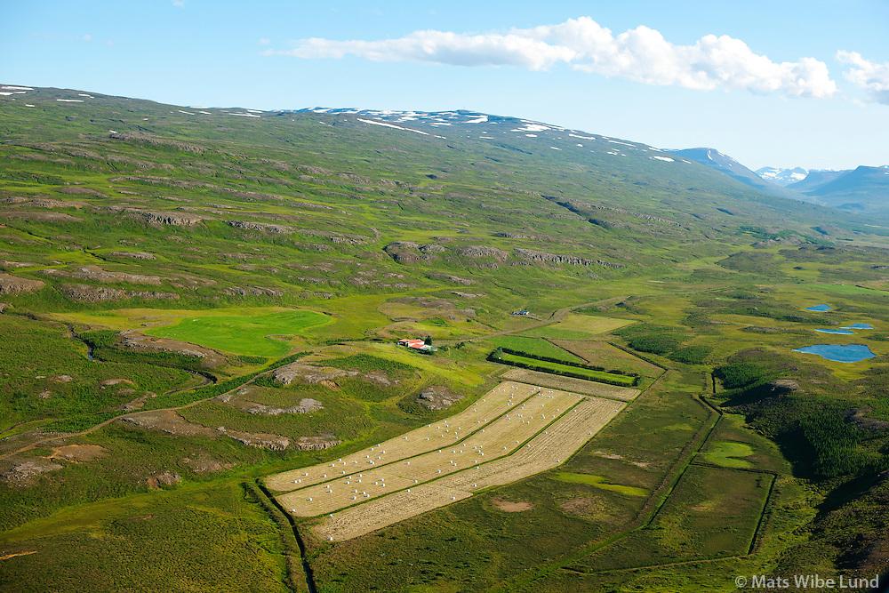 Tókastaðir séð til austsuðausturs, Fljótsdalshérað áður Eiðahreppur /  Tokastadir viewing eastsotheast, Fljotsdalsherad former Eidahreppur.