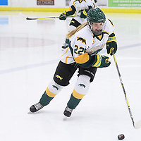 1st year defence man Jensen Smigelsky (22) of the Regina Cougars in action during the Women's Hockey home game on February 9 at Co-operators arena. Credit: Arthur Ward/Arthur Images
