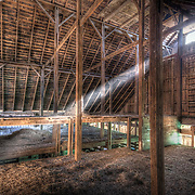 Early morning in the loft of Whitesell's mule barn