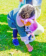 North Merrick, New York, USA. March 31, 2018. Toddler girl bends down to pick up egg during Egg Hunt at the Annual Eggstravaganza, held at Fraser Park and hosted by North and Central Merrick Civic Association (NCMCA).