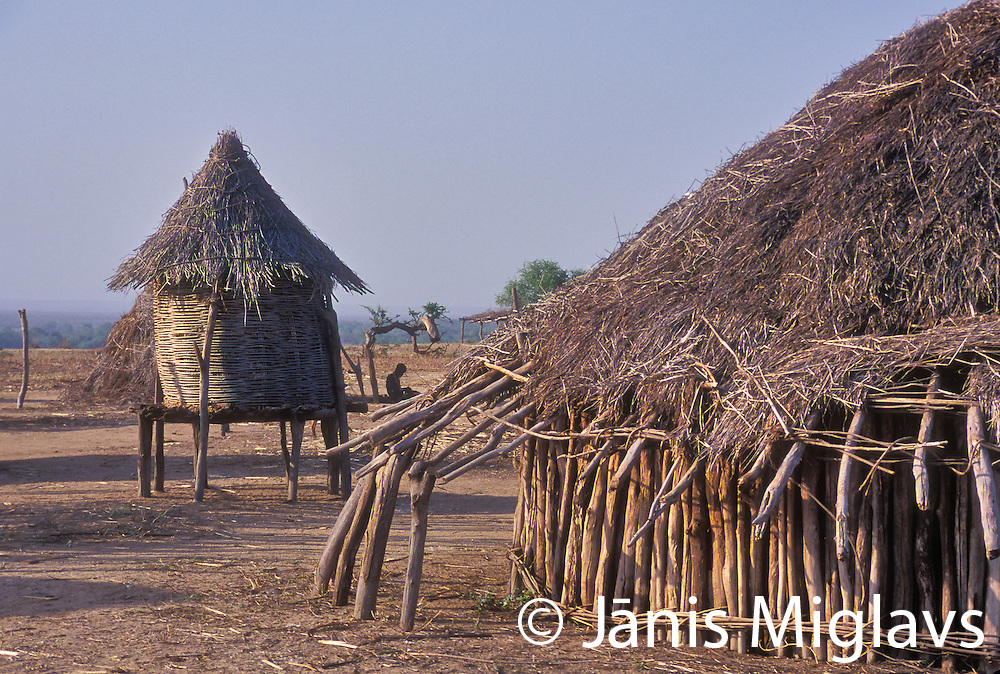 Africa, southern Ethiopia, Great Rift Valley, Omo River Valley. Karo tribe, live along the east banks of the Omo River
