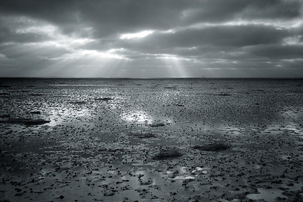 The mudflats of the Dutch Waddenzee, on the left the island of Ameland // Slik of de bodem van de Waddenzee. Links in de achtergrond Ameland.