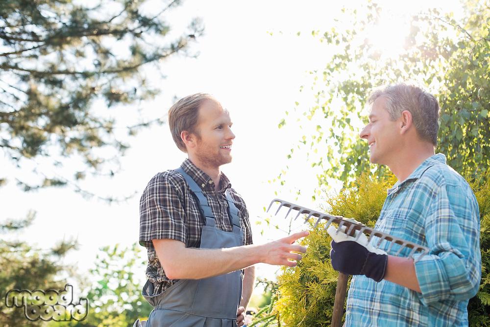 Male gardeners conversing at plant nursery