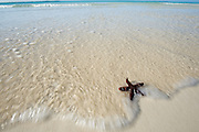 These are Bahamian travel and resort photos.  White sand beach, islands, and scenery.