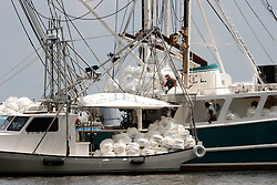 26 May 2010. Barataria Bay, Louisiana. <br /> From Barataria Bay to Grand Isle. Shrimp boats, ordinarily skimming the bay for shrimp are loading boom these days to try and keep the oil at bay. The environmental and economic impact is devastating with many shrimp boats tied up, vacation rentals and charter boat fishing trips cancelled the only business for shrimpers is loading and laying boom and working for big oil. Oil from the Deepwater Horizon catastrophe is evading booms laid out to stop it thanks in part to the dispersants which means the oil travels at every depth of the Gulf and washes ashore wherever the current carries it. <br /> Photo credit; Charlie Varley<br /> www.varleypix.com