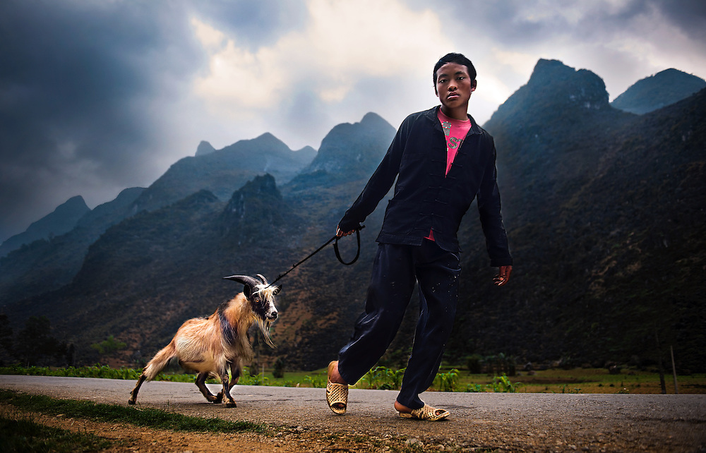 A farmer on the Dong Van Plateu walking his reluctant goat to the market, Vietnam.