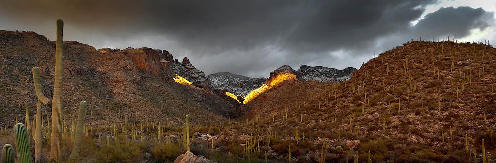 Finger Rock Trail head, Tucson AZ 2010