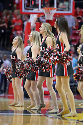 10 December 2016:  Redline dancers during an NCAA  mens basketball game between the UT Martin Skyhawks and the Illinois State Redbirds in a non-conference game at Redbird Arena, Normal IL