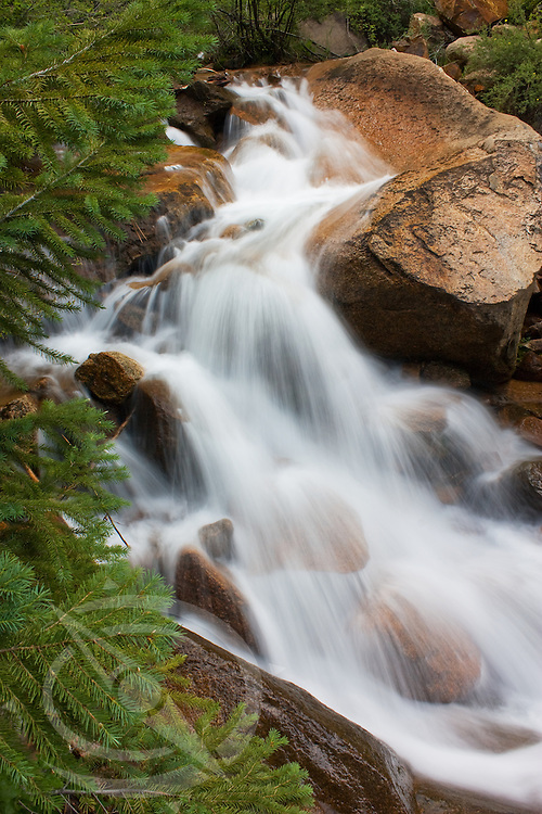 Flowing stream cascading through the rocks and fir trees in Cheyenne Canyon. Colorado Springs, Colorado