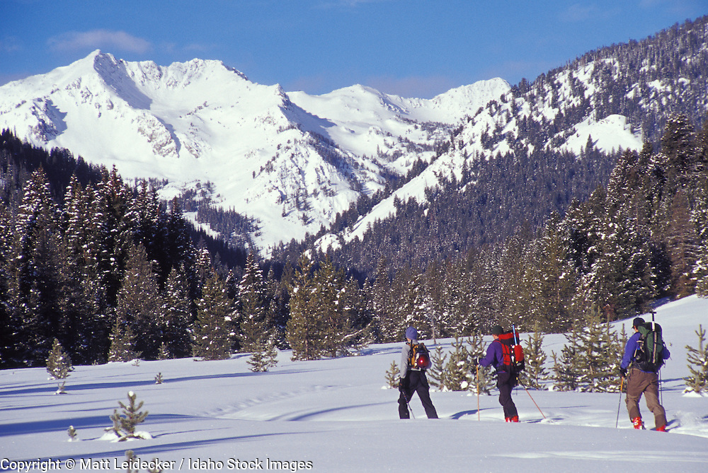 Idaho, near Sun Valley.  Cross country skiers on a sunny winter day.