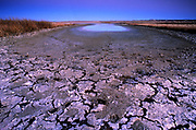Dried up pond in the Missouri River Breaks during a drought year in fall. Charles M. Russell National Wildlife Refuge, Montana
