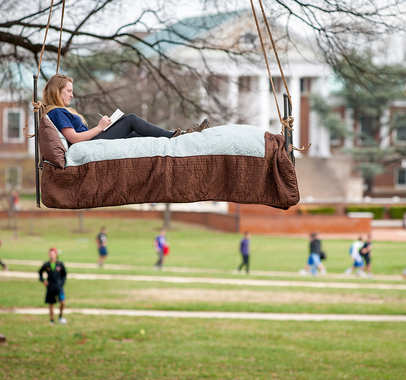 An art project showing a young woman doing homework on a bed hanging in a tree at College Park, Maryland