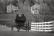 Amish buggy on the road to home ,Intercourse,PA. 03141981