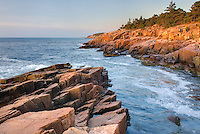 Colorful pink granite of Otter Point glows in the morning light, Acadia National Park Maine USA