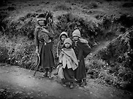 Kichwa family, living on the highland slopes of Chimborazo Volcano, returns to their home from their farm fields.  Ecuador.