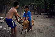 Kevin Ruiz Rojos and Daivid Clemente Rios playing racing on a goat.