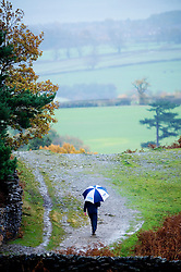 Walking in the rain with an umbrella, Bradgate Park, Leicestershire, England, United Kingdom.